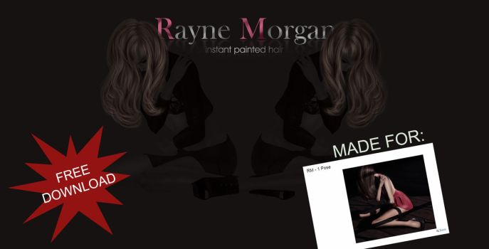 RM - Instant Painted Hair 161 by RayneMorgan