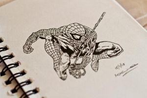 The Amazing Spider-Man by Leodwain