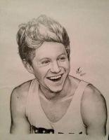 Niall Horan .:One Direction Series:. by zazafras
