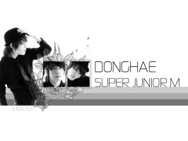 Donghae-SuperJuniorM by qdlego
