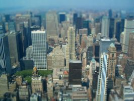 New York City From The Air by brothejr