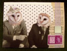 Business Owls by birdsyoucannotsee