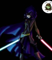 Let the force be in the b-day by TT-RS