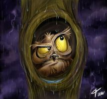Owl at rain- timwell by childrensillustrator