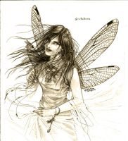 dragonfly by TS-cat