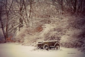 Early Snowstorm by jmarie1210