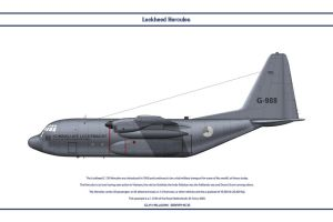 Hercules Netherlands 1 by WS-Clave