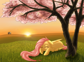 Fluttershy in Japan~ by KiteMegan
