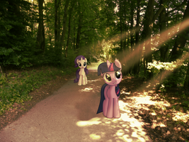 Unicorns going for a walk [PIRL] by colorfulBrony