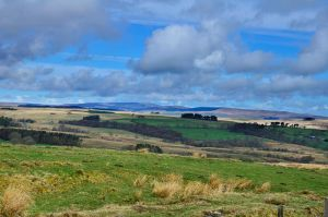 Fare Thee Well, Northumberland by roodpa