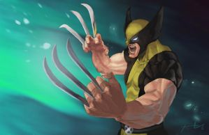 Wolverine by young-street