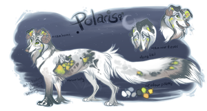 Polaris by poppyng