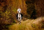 An Autumn Ride by Colourize
