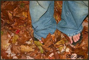 Fall 2006 by xXForeverImagesXx