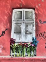 Door and flowers by WillemFred