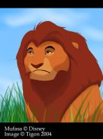 I like Mufasa by tigon