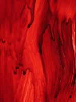 Red Blood 2 by FiLH
