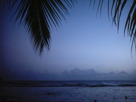Tropical view of the sea by Ilshidur