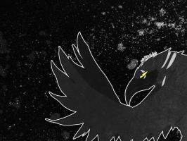 King Crow by risky
