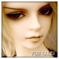 FOR SALE Volks SD17 Williams head $1200 FREE SHIP by fransyung
