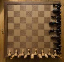 Check Mate by bowtiephotography