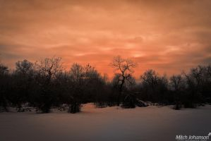 The Winter Pink Sunset by mjohanson
