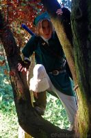 Link In A Tree. by FallMoonlitRose
