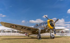 Curtiss P-36C by vipmig