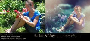 My rose garden before and after by CindysArt