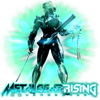 Metal Gear Rising Revengeance by POOTERMAN