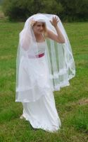 bride on a field - under the veil 1 by indeed-stock