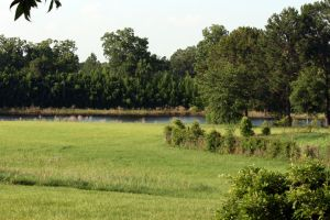 Field and Pond Stock by GloomWriter