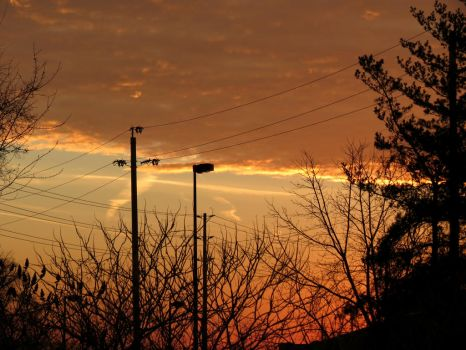 Orange Sky by Michies-Photographyy