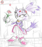 CP: Blaze the cat by shadowhatesomochao