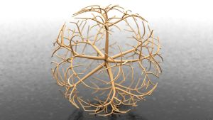 Sphere Growth A by Mathness