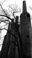 Minnesota Ruins 1 by simpspin