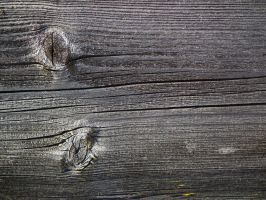 Wood Texture 01 by Limited-Vision-Stock