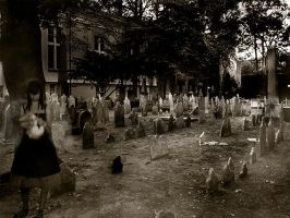 Walk Me To The Graveyard by Wicky13