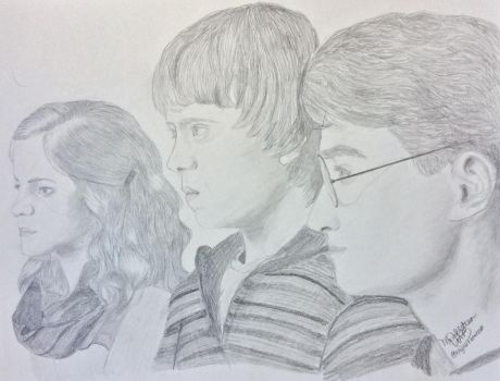 Hermione, Ron and Harry by UtterlyAbsurdBella