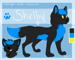 Shelby ref by Pigeon-Feathers