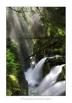 Light Rays at Sol Duc Falls by anonymous66