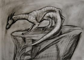 Charcoal Sketch Dragon by SpiderMilkshake