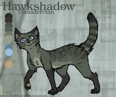 Hawkshadow reference sheet by NonsensicalLogic