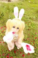 White Bunny (7) by Book-No00