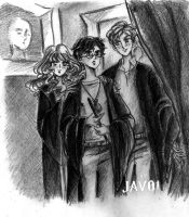 Harry Potter ,Ron and Hermione by zelldinchit
