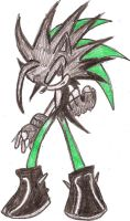 Ashura the Hedgehog by Tigra-The-Fox