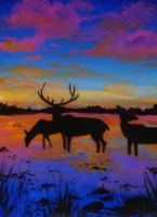 Deer in a flooded field_ACEO by Ethereal-Beings