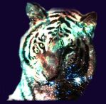 Cosmic Tiger by ZNSinger