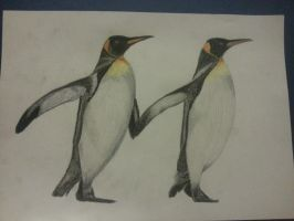 Pinguinos by Seluni