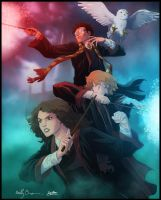Harry Potter -Trio- by diabolumberto